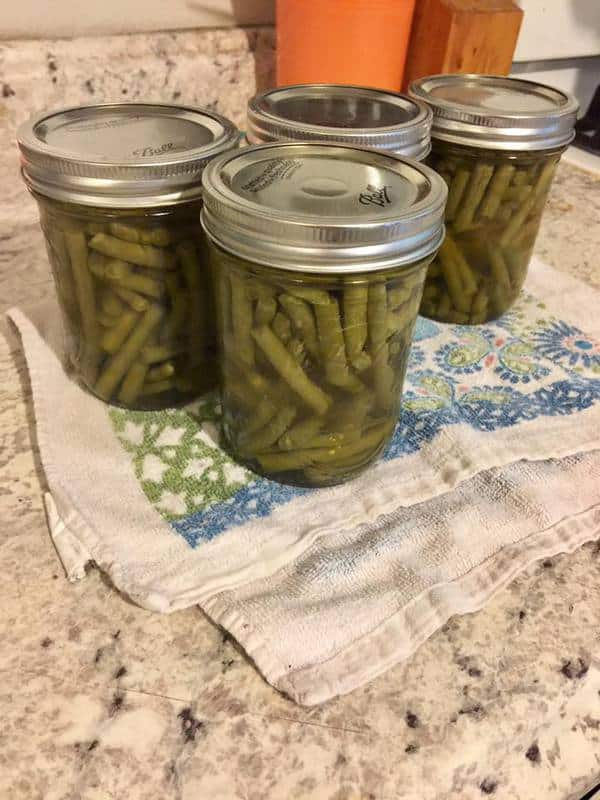 Canning Green Beans: Raw Pack Method