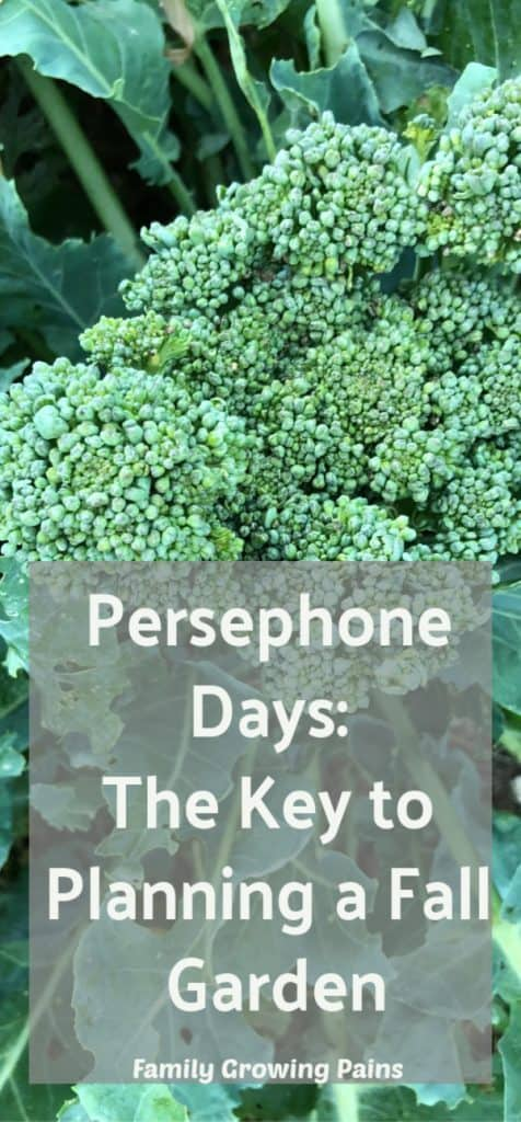 Persephone Days: How to Calculate Your Fall Garden