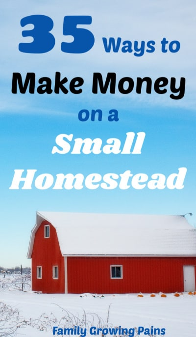 Make Money on a Small Homestead