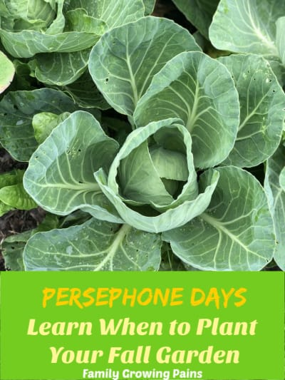 Persephone Days - When to Plant Your Fall Garden