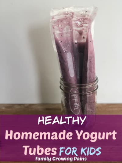 Homemade Yogurt Tubes for Kids