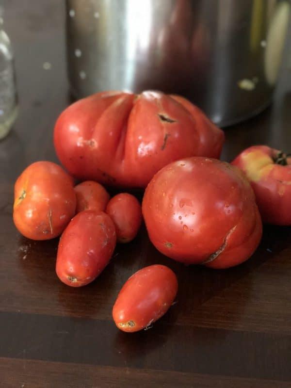 Zucchini Salsa Tomatoes