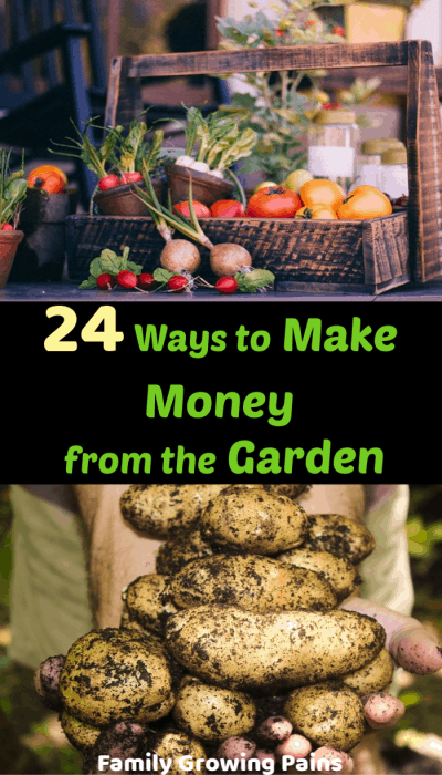 Make Money from the Garden