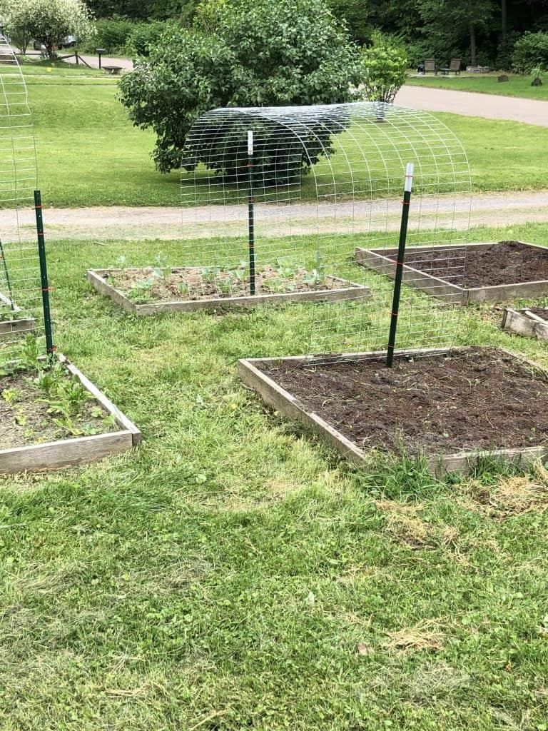 Garden Beds Spring Gardening Tasks